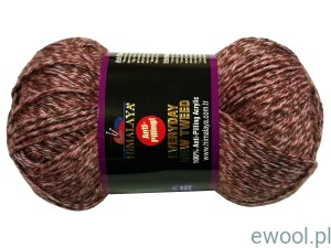 Włóczka Everyday New Tweed Himalaya 75120